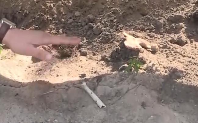 В канун 9 мая дети играли с черепом у братской могилы